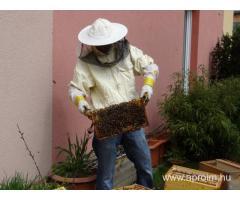 Méhész OKJ-s tanfolyam Zalaegerszegen