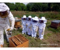 Méhész OKJ-s tanfolyam Vasváron